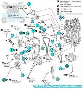 2006 Nissan Altima Timing Chain Parts Diagram Qr25de Engine
