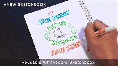 Whiteboard Dry Markers Erase Expo Fine Reusable