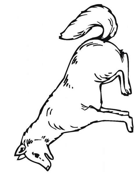 dessin de loup assis coloriage loup 224 imprimer gratuitement