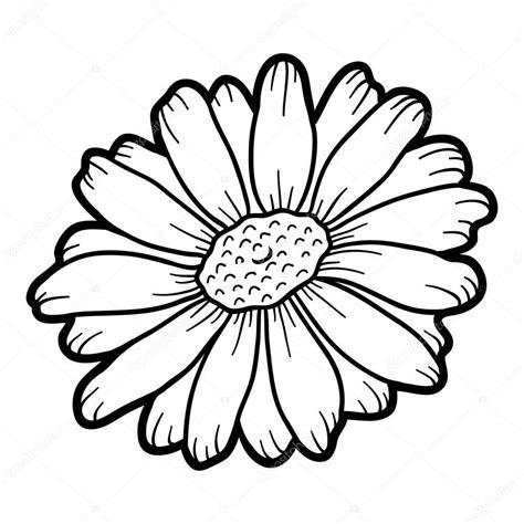 livro de colorir flores de camomila vetor de stock