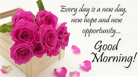 Every Morning Quotes Morning Beautiful Quotes Morning Quotes Hd Images Morning Greetings Messages