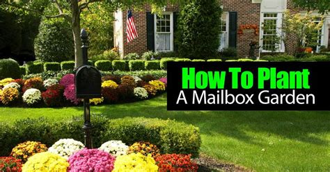 how to landscape my garden how to plant a mailbox garden video