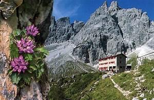 Cartoline Delle Vacanze 2 Montagna Dolomiti Gruppo