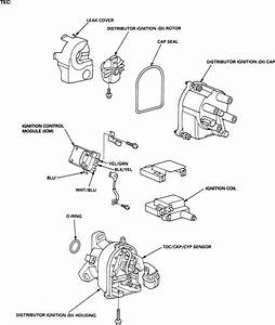 1998 Honda Civic Ex  Start Back  The Ignition Coil And Rotor