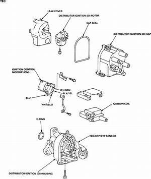 95 Honda Civic Ex Ignition Wiring Diagram Dick Francis 41443 Enotecaombrerosse It