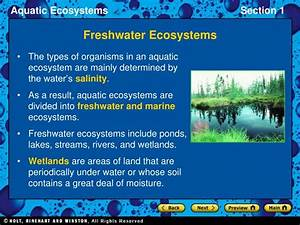 Ppt - Freshwater Ecosystems Powerpoint Presentation