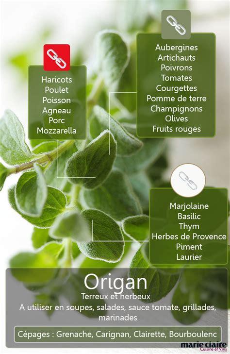 comment utiliser l 39 origan en cuisine cuisine et vins de