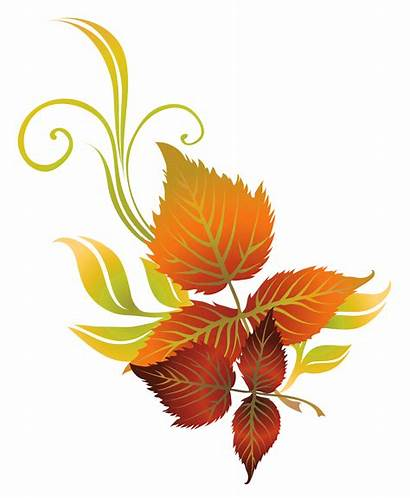 Fall Clipart Leaves Leaf Clip Autumn Flowers