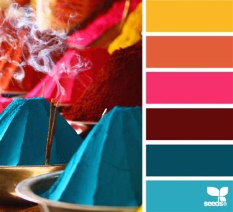 color seeds 1000 ideas about seeds color palettes on