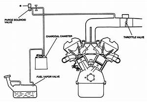 3 4l Engine Vacuum Line Diagram  U2022 Downloaddescargar Com