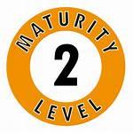 Level Maturity Icon Lemontree Avetica Partij Myobi