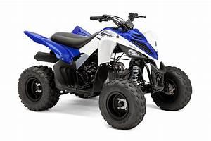 Yamaha U0026 39 S 2016 Raptor 90 Youth Atv Available For Holidays