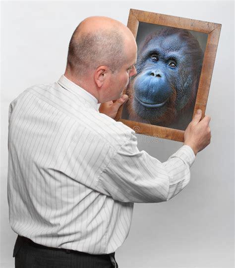 human evolution stock photo image  bathroom joke