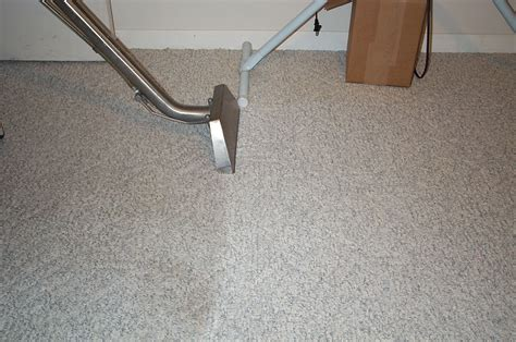 Dust Mites Carpet Cleaning