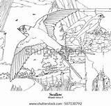 Swallow Drawings Rustica Hirundo Shutterstock Goat Draw sketch template