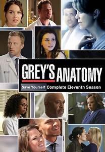 Subscene - Subtitles for Grey's Anatomy - Eleventh Season