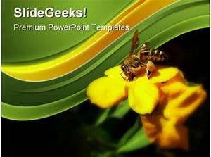 Honey Bee Collecting Pollen Nature Powerpoint Templates