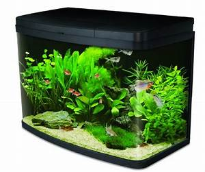 Liter Aquarium Berechnen : interpet insight glass aquarium premium kit 64 litre snazzy pet ~ Themetempest.com Abrechnung