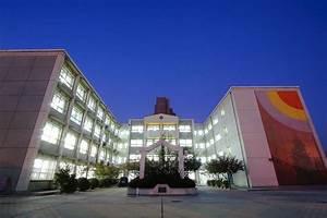 Japanese School Of Beijing
