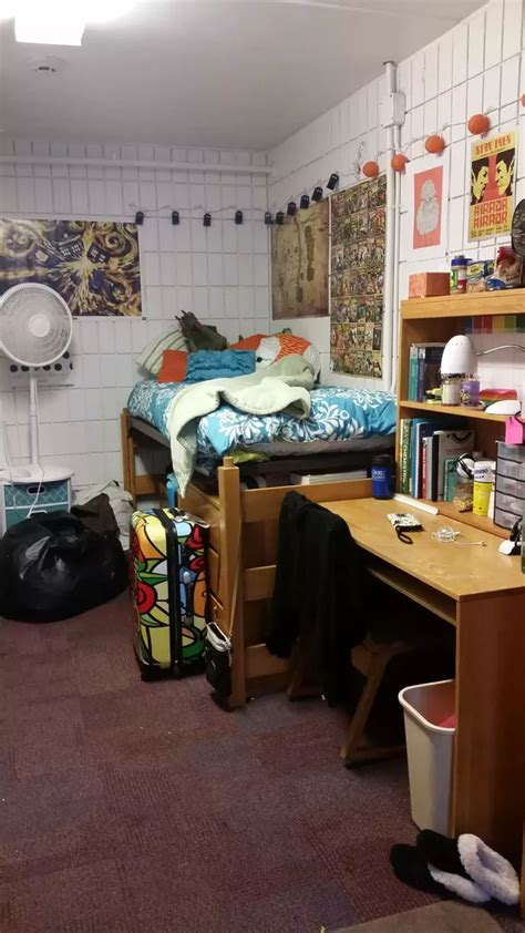What Do College Dorms Typically Look Like? (please Include