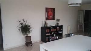 comment decorer le grand mur de mon salon With comment meubler un grand salon 5 deco salon avec alcove