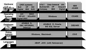 Sap Basis Tutorials   Components And Tcodes