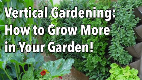 in the garden and more vertical gardening simple ideas for a vertical vegetable garden youtube