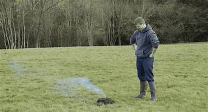 Cow Firecracker Dung Detonating Paid Gets Guess