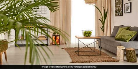 Cleaning Air In Our Homes Key To Checking Pollution: Book ...