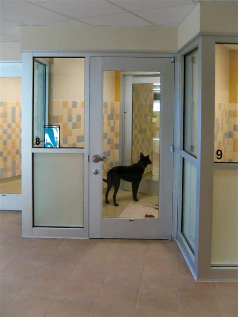 dog adoption kennel  longmont humane society designed