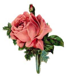 wedding flowers october vintage graphic pink boutonniere the graphics fairy