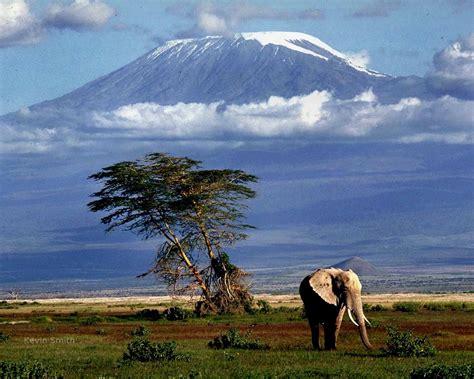 Weiß Groß by Der H 246 Chste Berg Afrikas Der Kilimandscharo Wie Gross