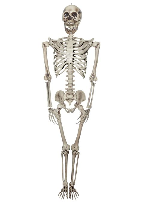 titan skeleton