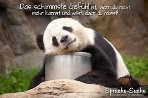 Traurige Bilder Zum Nachdenken : spr che zum nachdenken schlimme gef hle spr che suche ~ Frokenaadalensverden.com Haus und Dekorationen