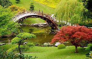 Luxury Japanese Garden Minimalist Concept Exotica