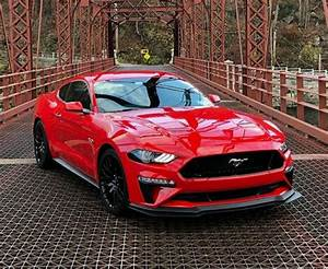 Pin by Ray Wilkins on Mustangs | Bmw, Ford mustang, Car