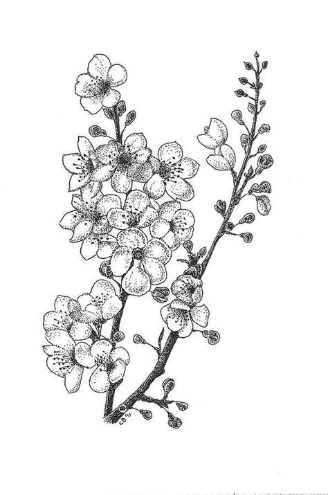 73f2323f1cf3ffcb2c92e306bb2a2c8f.jpg (596×900) | Flower