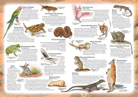 new the australian animal atlas by leonard cronin hardcover free shipping 9781760294144 ebay