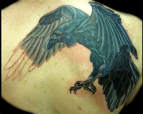 tattoo inspiration large raven covering    dove