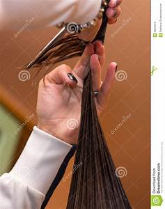 Professional Hair Stylist At Work Stock Photos - Image ...