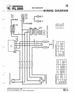 fl250 helppppppp With honda ct70 wiring diagram 1981 honda ct70 wiring diagram ct70 wiring