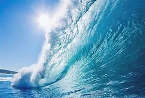 33 English Beach Vocabulary Words for Summer Fun   FluentU ...  Wave