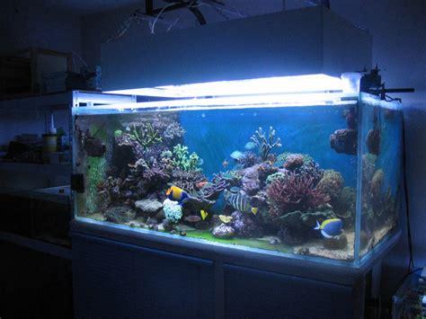 aquarium d eau de mer aquarium eau de mer 600 litres