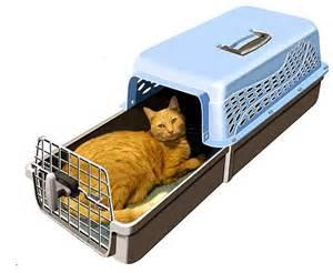 cat travel carrier 25 best ideas about cat carrier on cat