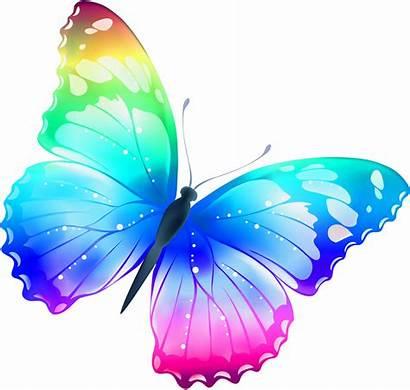 Clipart Butterfly Transparent Butterflies Clip Colorful Multi
