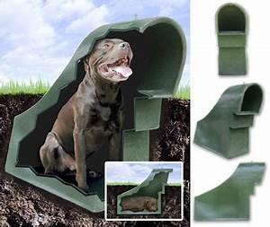 creative juice pamper your pooch With geothermal dog house