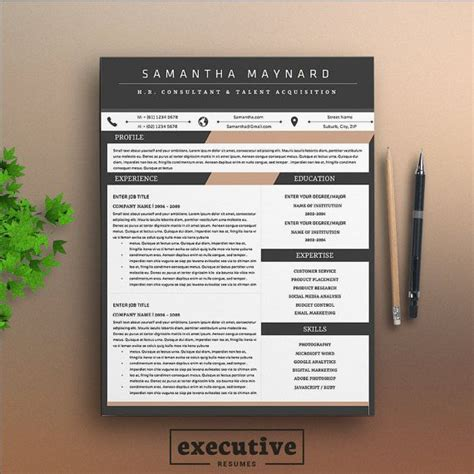12319 modern executive resume template 25 best ideas about executive resume template on