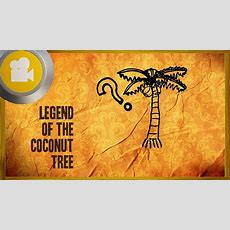 Legend Of The Coconut Tree Youtube