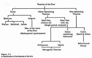Top 3 Theories Of Firm  With Diagram
