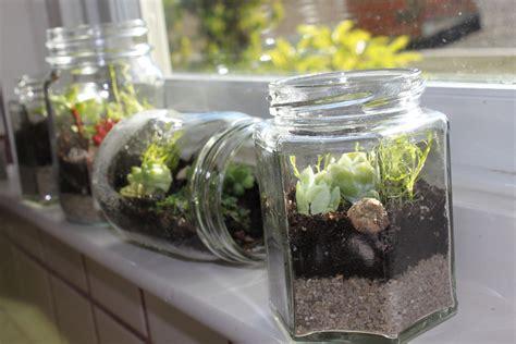 jar terrarium jam jar terrarium make me some soap